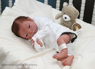 Reborn Julie Molloy Adam Addison Mix Newborn Baby Brenden Scott