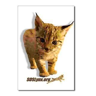 SOS Lynx Postcards (8) > SOS Lynx Online : Save the Iberian Lynx