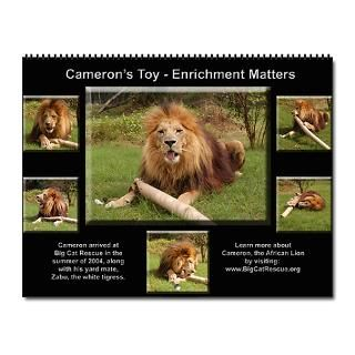 Gifts  Africa Home Office  12 Big Cat Collages Wall Calendar