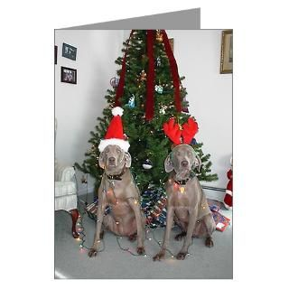Weimaraners Greeting Cards  Buy Weimaraners Cards