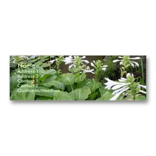 Hosta in a Zen Garden #2 Business Cards