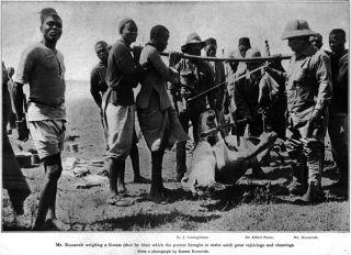 Teddy Roosevelt Kapiti Plains Lion Hunt Safari Ugami 1909 African Game