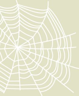 white spider web home car van decal sticker add that rustic touch to
