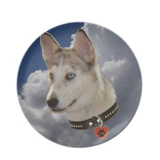 Serene Husky Dog in Fluffy White Clouds Dinner Plate