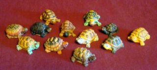 Lot of 12 Collectible Turtle Figurines Land Sea Nature Series