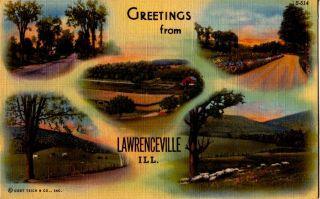 Postcard 921720 Lawrenceville IL Parks Farms Sheep