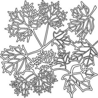 12x12 Crafters Workshop Stencil Template Maple Leaves