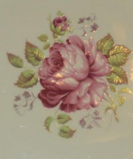 Staffordshire Princess Elizabeth Pink Rose Signed A s Smith