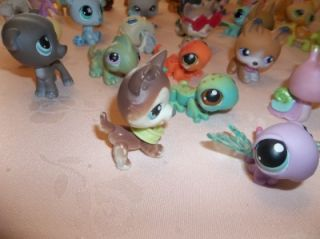 LITTLEST PET SHOP DOGS CATS MONKEY LIZARDS BIRDS HORSE TURTLE & MORE