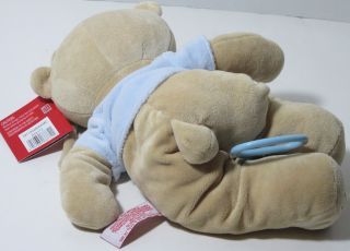 2010 FAO Schwartz Blue Boy Teddy Bear Musical Crib Pull Toy Lovey