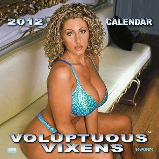 Voluptuous Vixens 2012 Wall Calendar