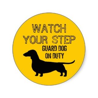 Dachshund Watch Your Step Funny Design Sticker