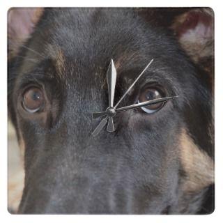 German Shepherd Dog Square Wallclocks