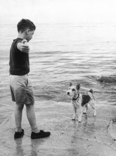 A Boy Throws Stones into the Sea for His Dog to Retrieve the Dog s Up Expectantly Photographic Print by Henry Grant