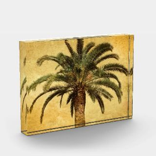 Palm Tree   Tropical Customized Template Acrylic Award
