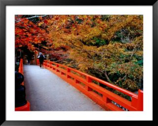 Bridge Leading to Saimyo Ji, Kyoto, Japan Pre made Frame