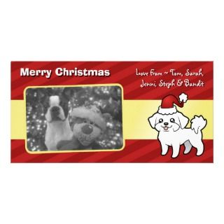 Christmas Maltese (puppy cut) Customized Photo Card