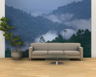 Cloud Forest, Central America Wall Mural – Large by Steve Winter