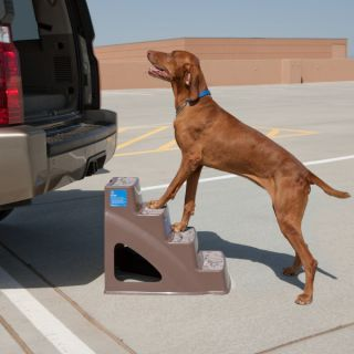 Dog Ramps & Steps Top Paw&#153 Pet Step