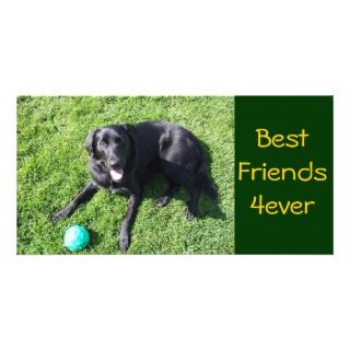 Dog playing with ball   happy Best Friends Picture Card