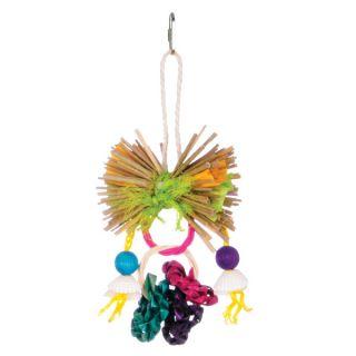 Prevue Calypso Creations Ring Toss Bird Toy   Toys   Bird