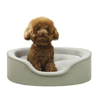 Soft Touch Faux Suede Oval Cuddler Dog Bed   Sage