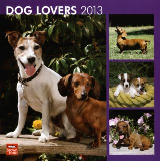 Dog Lovers   2013 Wall Calendar Calendars