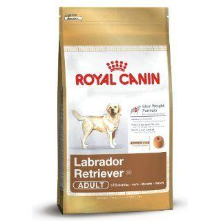 Royal Canin 35298 Breed Labrador Retriever 12 kg: Haustier