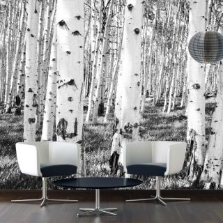 Fototapete Birken Grey   Foto Tapete Baum Vlies Vliestapete Natur Wald