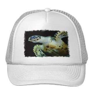 Leatherback Sea Turtle Baseball Hat