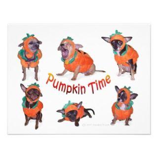 Pumpkin Time Chihuahuas Invite