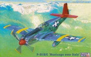 51 B/C MUSTANG RED TAILS (31 FG & 332 FG /99TH & 302ND FS/) 1/72