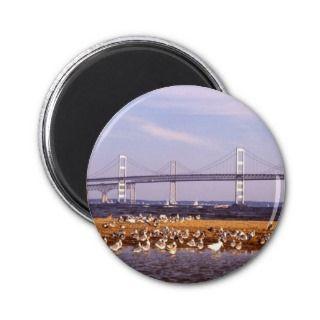 Birds on Chesapeake Bay Refrigerator Magnets