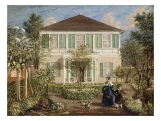 In the Garden of a House in the West Indies, 1844 Giclee Print by Isaac Mendez Belisario