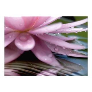Elegant Lotus Flower Personalized Invitations