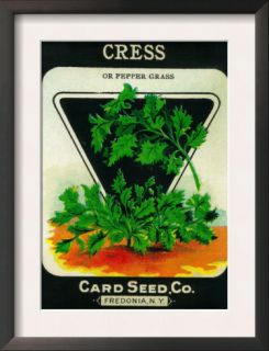 Cress Seed Packet Prints