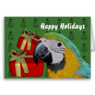 Blue Gold Macaw Parrot Christmas Holiday Card