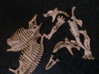 DINOX Dinosaurier Skellet zum selber bauen 16 cm NEU OVP
