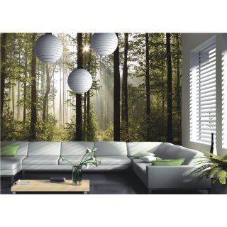 Natur Wald Bäume Lichtspiel Foto 360 cm x 254 cm: Baumarkt