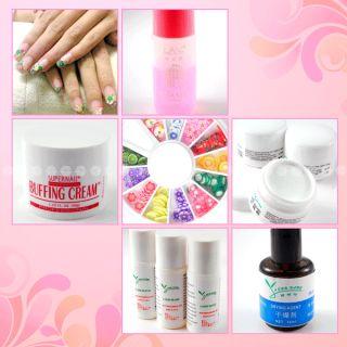 NAIL ART Acrylic powder + UV gel French Nail tips/ brush/ manicure kit
