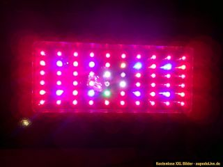 4x STÜCK HIGH POWER LED GROW PANEL LAMPE 60 x 5w LED IM SET NEUWARE 8
