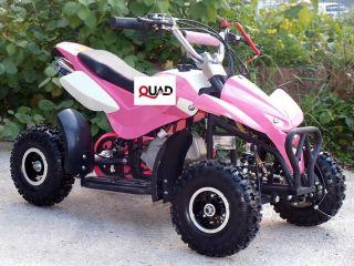 Mini Quad ATV Kinderquad 49 cc Powerquad 49ccm aktuelles Modell NEU