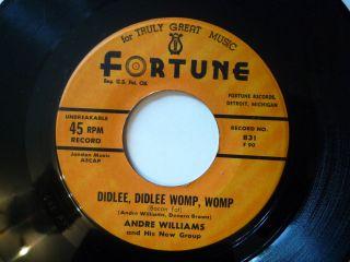 Andre Williams Bacon Fat Orig US FORTUNE 831 Popcorn R&B Rare