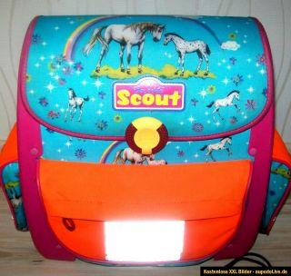Scout pferde