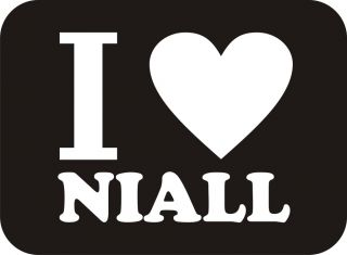 LOVE NIALL Horan Boys Band 1D One Direction Up All Night Music Funny