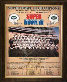1968 New York Jets NFL Football Super Bowl 3 III