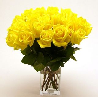 Yellow Long Stem Roses (Case of 20)
