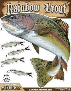 Salty Bones Large Rainbow Trout Action Decal   13.5 x 10