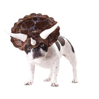 Animal Planet Triceratops Dog Halloween Costume