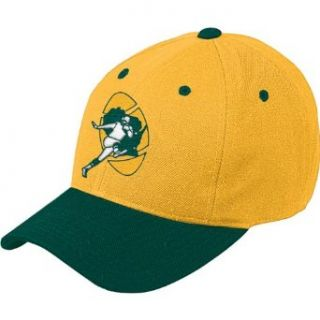NFL Green Bay Packers End Zone Retro Logo Wool Cap, One